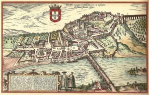 CoimbraBraunio